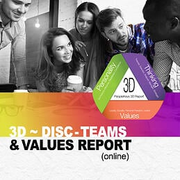 3d-report-online-disc-teams-values-1.jpg