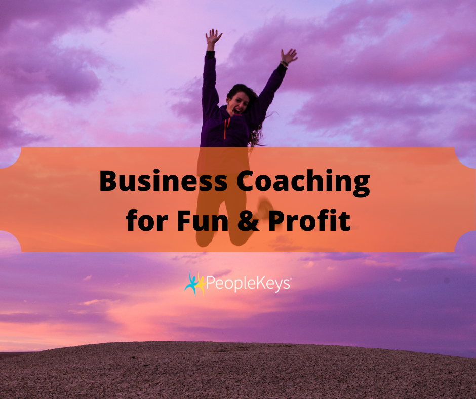 Business Coaching for Fun and Profit