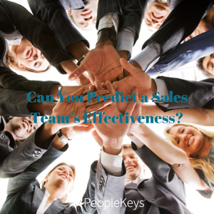 Can You Predict a Sales Team's Effectiveness