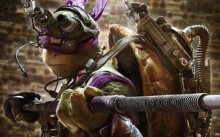 Leonardo: Donnie, what are the odds of surviving this? Donatello: 0.00000003%! Leonardo: I'll take it!