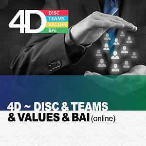 4D Report-DISC-TEAMS-Values-BAI