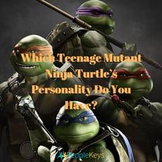 Which Teenage Mutant Ninja Turtle's Personality Do You Have_