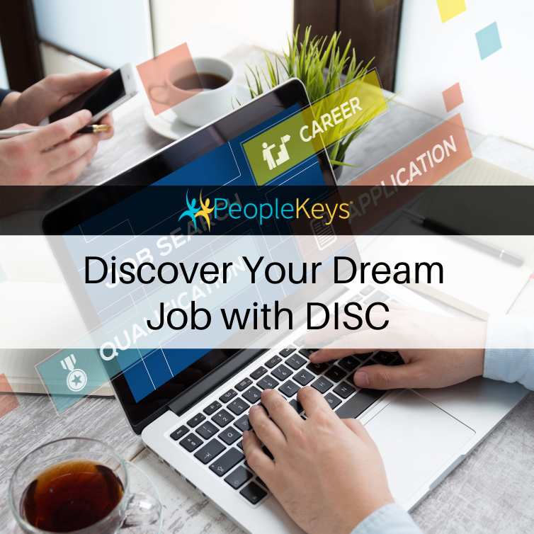 Discover your dream job with DISC